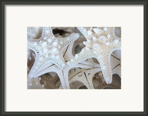 White Starfish Framed Print By Carol Groenen