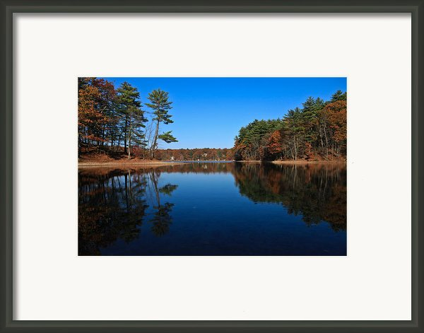 Whites Pond Framed Print By Corey Sheehan