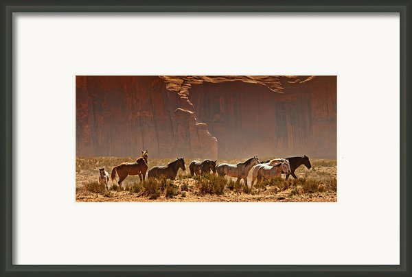 Wild Horses In The Desert Framed Print By Susan  Schmitz
