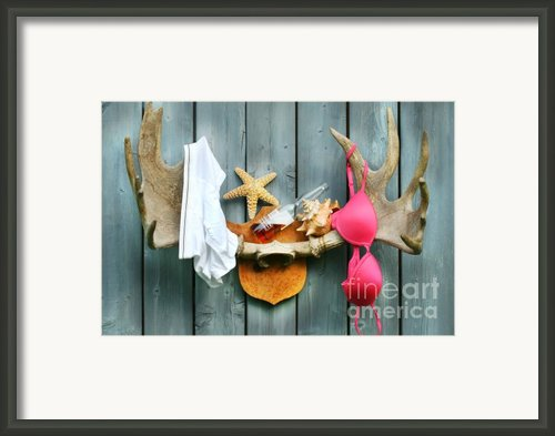 Wild Summer Cottage Weekend Framed Print By Sandra Cunningham