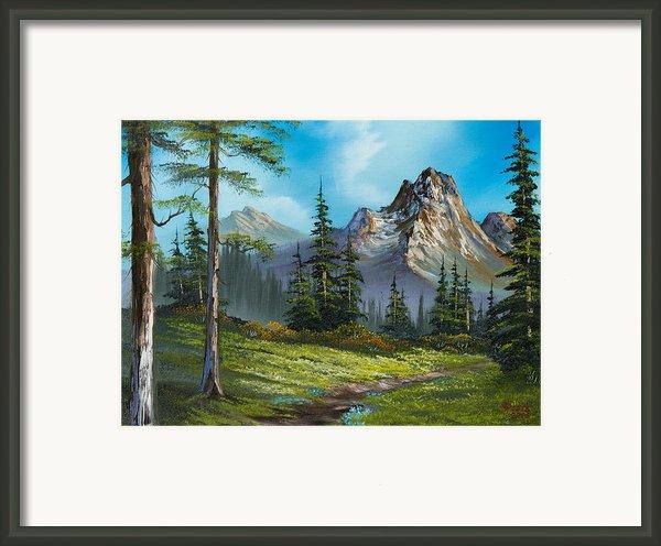 Wilderness Trail Framed Print By C Steele