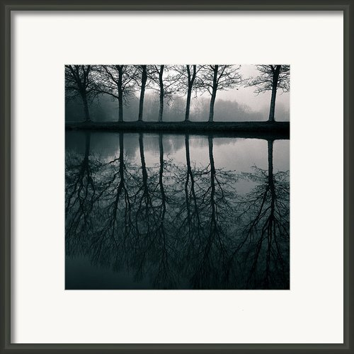 Wilhelminapark Framed Print By David Bowman