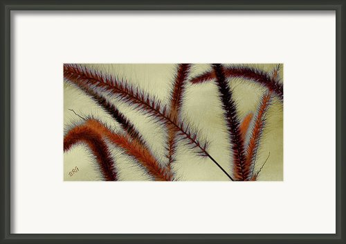 Wind Framed Print By Ben And Raisa Gertsberg
