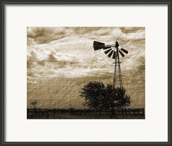 Wind Blown Framed Print By Tony Grider