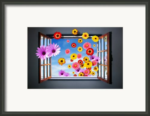 Window Of Fowers Framed Print By Carlos Caetano