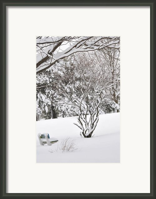 Winter Bench Framed Print By Frederico Borges
