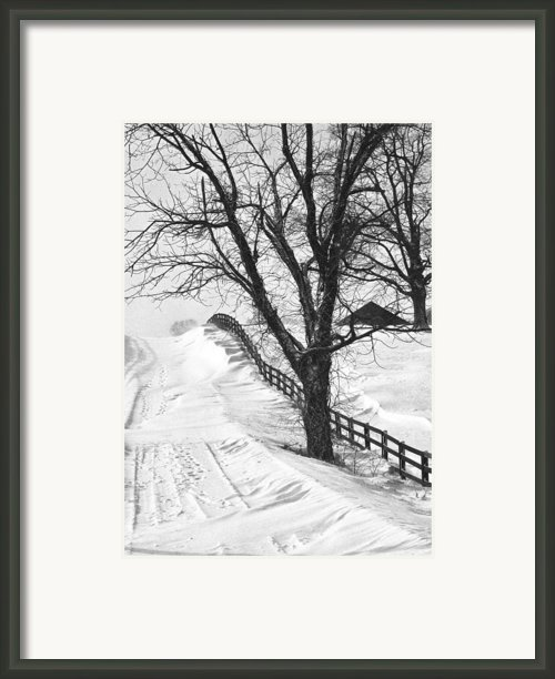 Winter Driveway Framed Print By Wendell Thompson