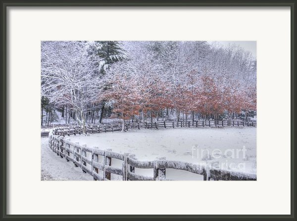 Winter Fenced In Framed Print By Benanne Stiens