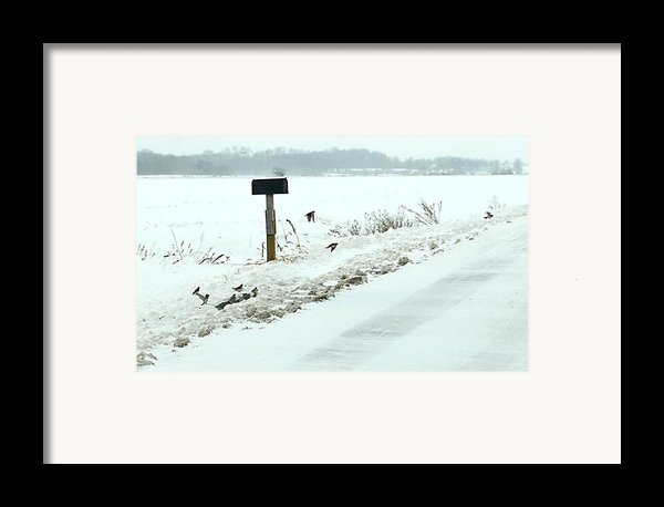 Winter Foragers Framed Print By Julie Dant