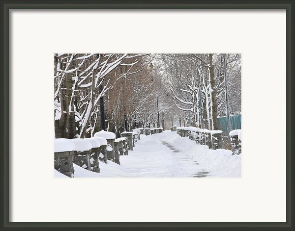 Winter Framed Print By Frederico Borges