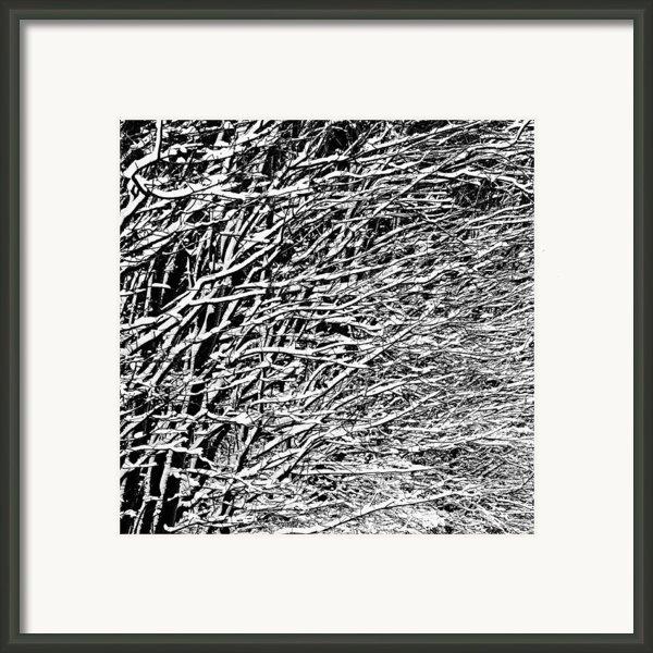 Winter Framed Print By Gert Lavsen