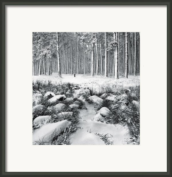 Winter Is Here Framed Print By Vladimir Kholostykh