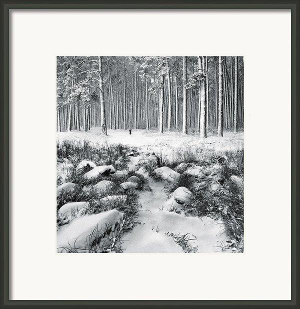 Winter Is Here Framed Print By Vladimir Kholostykh