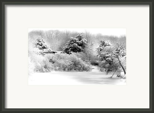 Winter Landscape Black And White Framed Print By Julie Palencia
