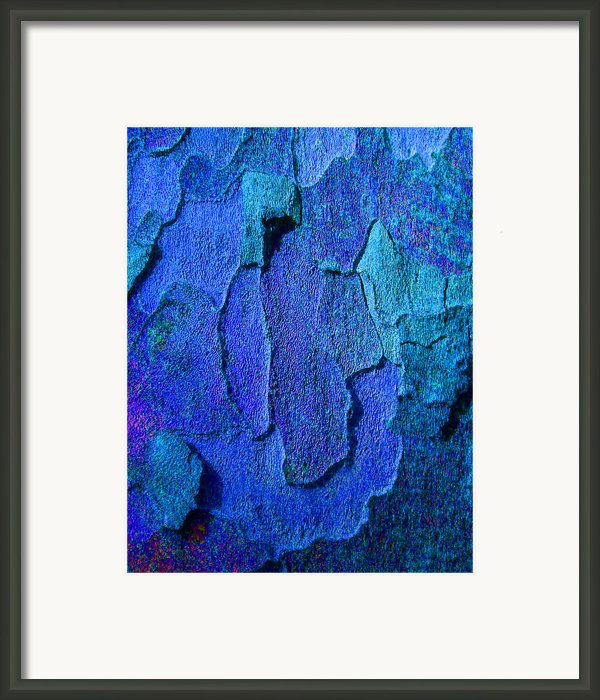 Winter London Plane Tree Abstract 4 Framed Print By Margaret Saheed