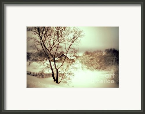 Winter Loneliness Framed Print By Jenny Rainbow