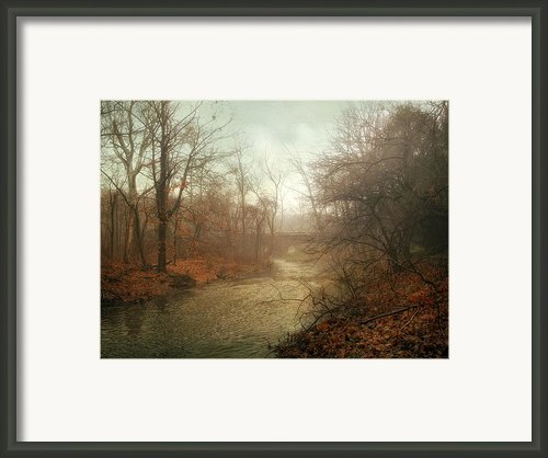 Winter Mist Framed Print By Jessica Jenney