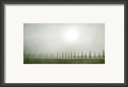 Winter Morning Londrigan 7 Framed Print By Linda Lees