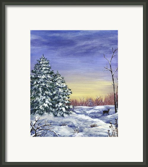 Winter Pine Trees Framed Print By Anastasiya Malakhova