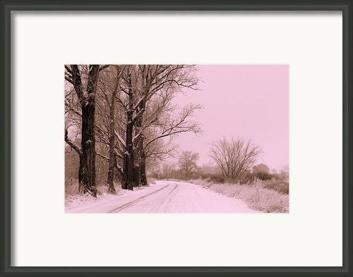 Winter Pink Framed Print By Carol Groenen