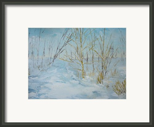 Winter Scene Framed Print By Dwayne Gresham