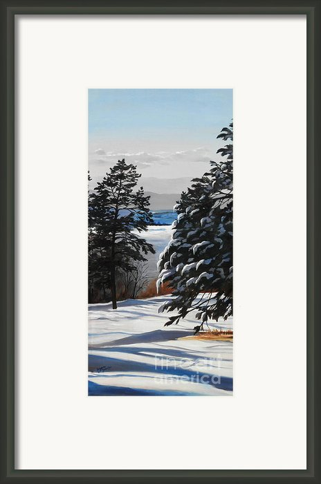 Winter Serenity Framed Print By Suzanne Schaefer