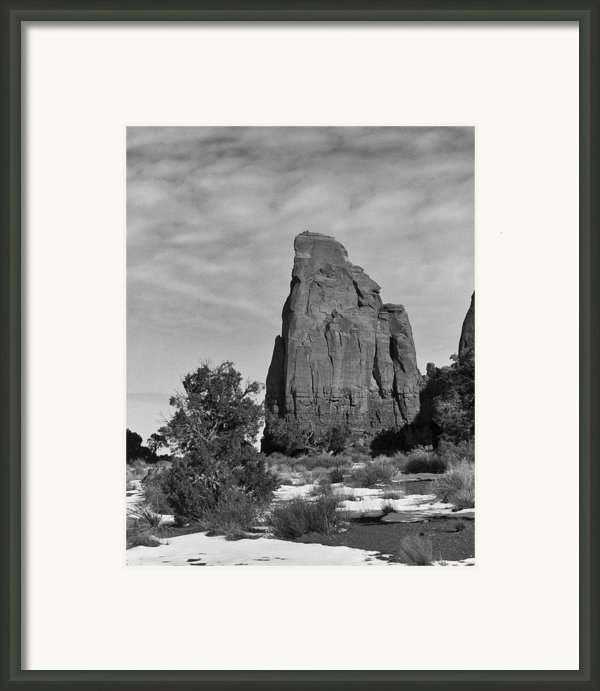 Winter Solitude Framed Print By Mel Felix