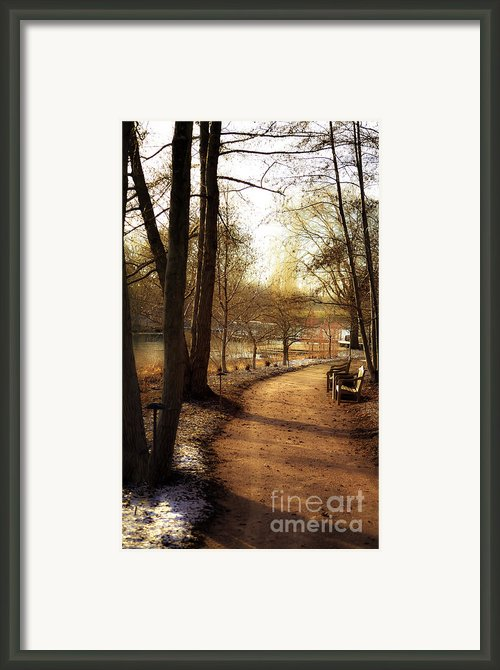 Winter Sunshine Framed Print By Julie Palencia