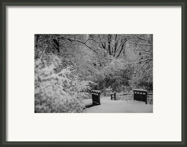Winter Wonderland Framed Print By Sebastian Musial