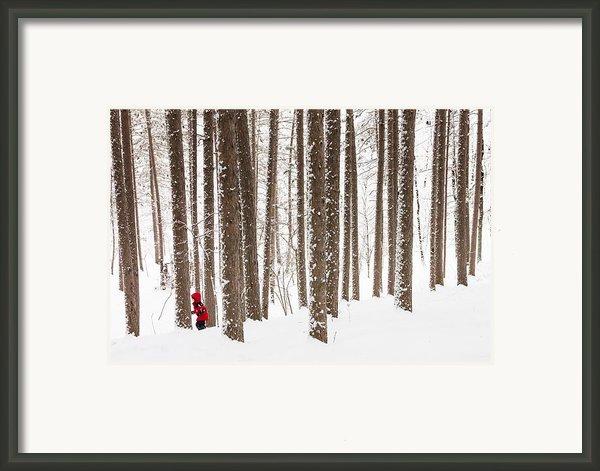 Winter Frolic Framed Print By Mary Amerman