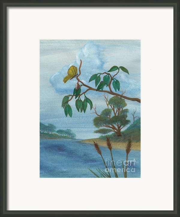 With New Wings Framed Print By Robert Meszaros