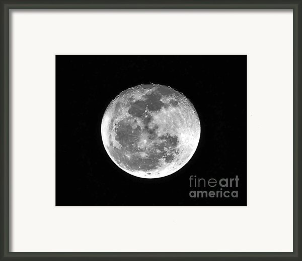Wolf Moon Waning Framed Print By Al Powell Photography Usa