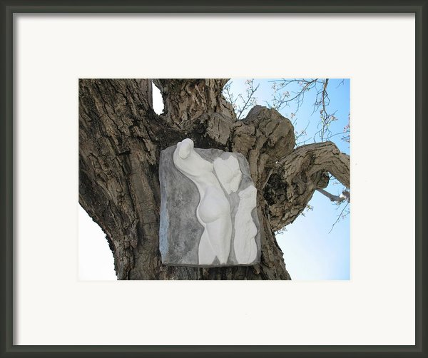 Woman Torso - Cast 1 Framed Print By Flow Fitzgerald