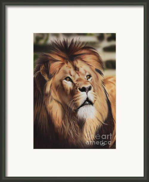 Wondering Framed Print By Jackie Mestrom