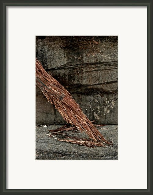Wood Abstraction Framed Print By Odd Jeppesen