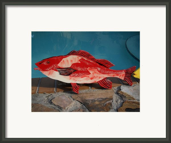 Wooden Red Snapper Framed Print By Val Oconnor