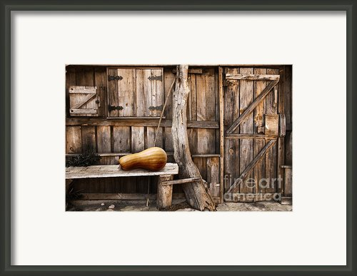 Wooden Shack Framed Print By Carlos Caetano