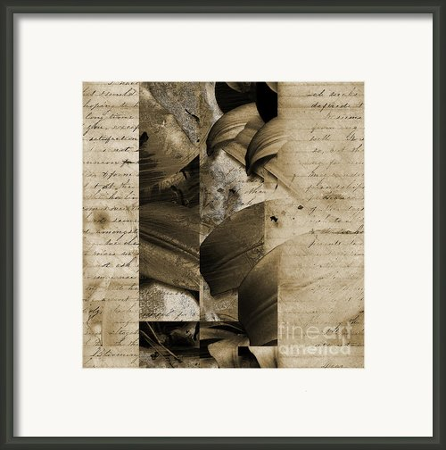 Written Iii Framed Print By Yanni Theodorou