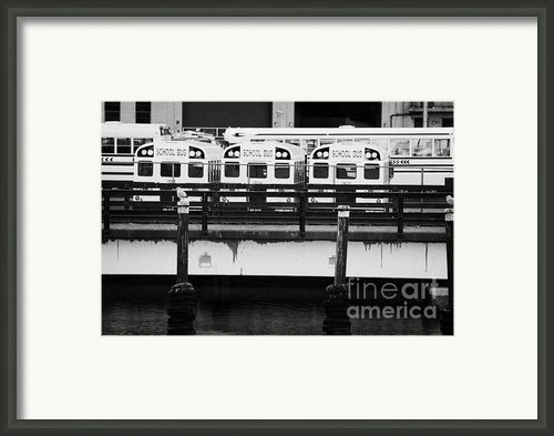 Yellow School Buses In A Car Park New York City Framed Print By Joe Fox