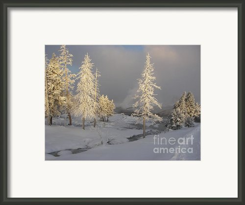 Yellowstone Winter Framed Print By Jeanette French