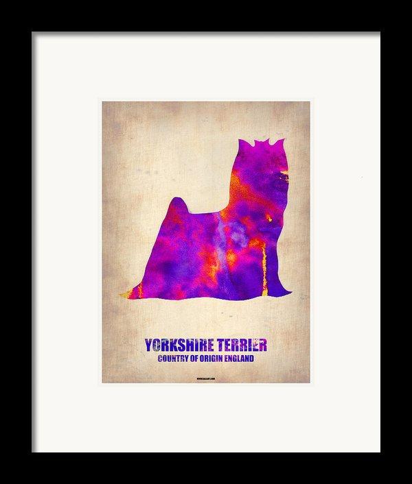 Yorkshire Terrier Poster Framed Print By Naxart Studio