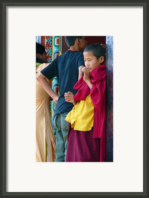 Young Tibetan Monk Framed Print By Dagmar Ceki