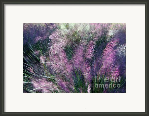 A Light Breeze  Framed Print By Gerlinde Keating - Keating Associates Inc