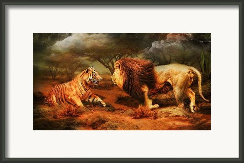 No Mercy Framed Print By Trudi Simmonds