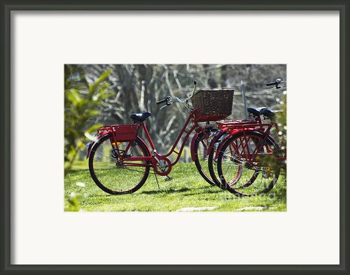 Red Bicycle In The Country Framed Print By Anahi Decanio