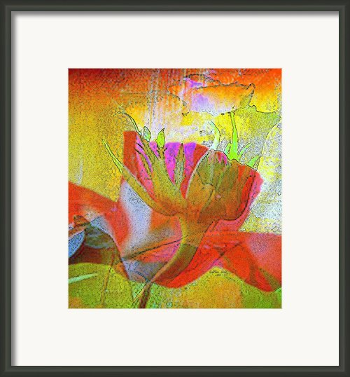 Rose Superimposed Framed Print By Linda  Lane - Bloise