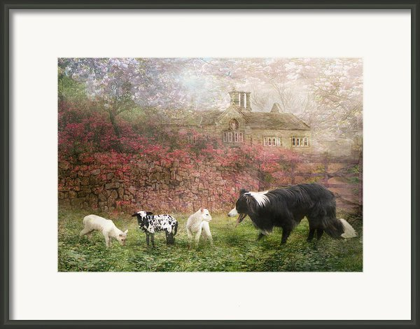 The Babysitter Framed Print By Trudi Simmonds