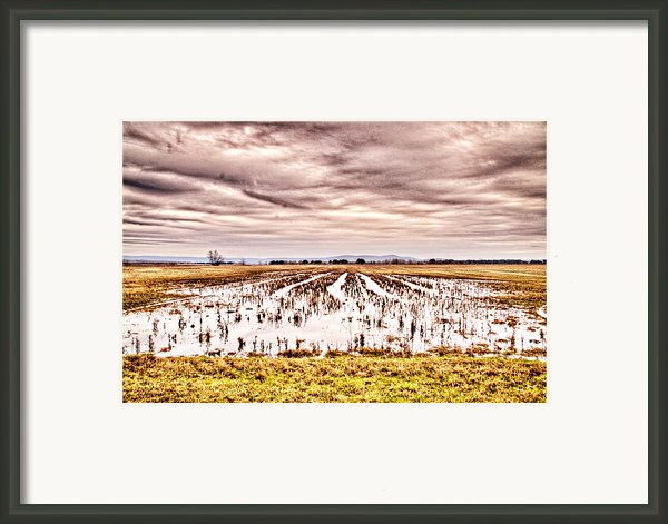 0704-8703 Winter Clouds At Holla Bend Wildlife Refuge Framed Print By Randy Forrester