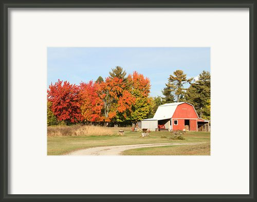 10022012 066 Framed Print By Mark J Seefeldt