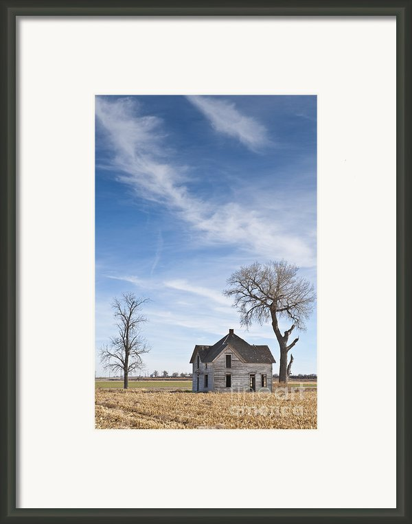 Abandoned House In Field Framed Print By Dave & Les Jacobs